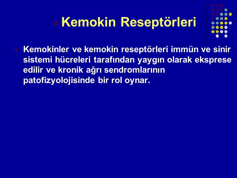 Kemokin Reseptörleri Kemokinler ve kemokin reseptörleri immün ve sinir sistemi hücreleri tarafından yaygın olarak eksprese edilir ve kronik ağrı sendr