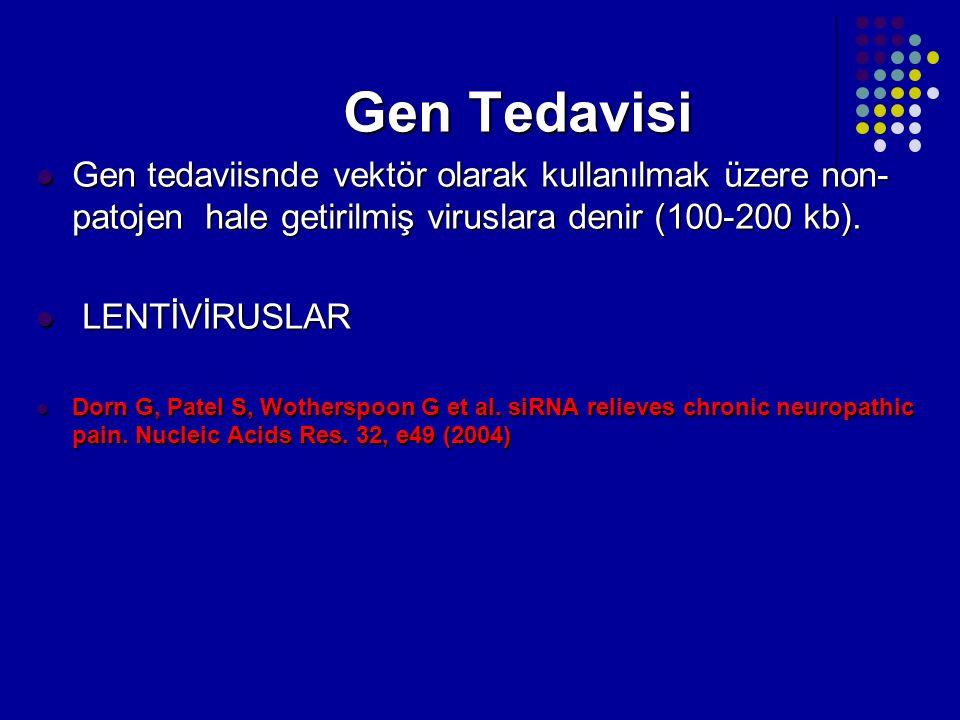 Gen Tedavisi Gen Tedavisi Gen tedaviisnde vektör olarak kullanılmak üzere non- patojen hale getirilmiş viruslara denir (100-200 kb). Gen tedaviisnde v