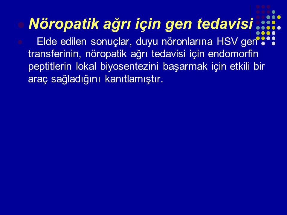 Nöropatik ağrı için gen tedavisi Elde edilen sonuçlar, duyu nöronlarına HSV gen transferinin, nöropatik ağrı tedavisi için endomorfin peptitlerin loka