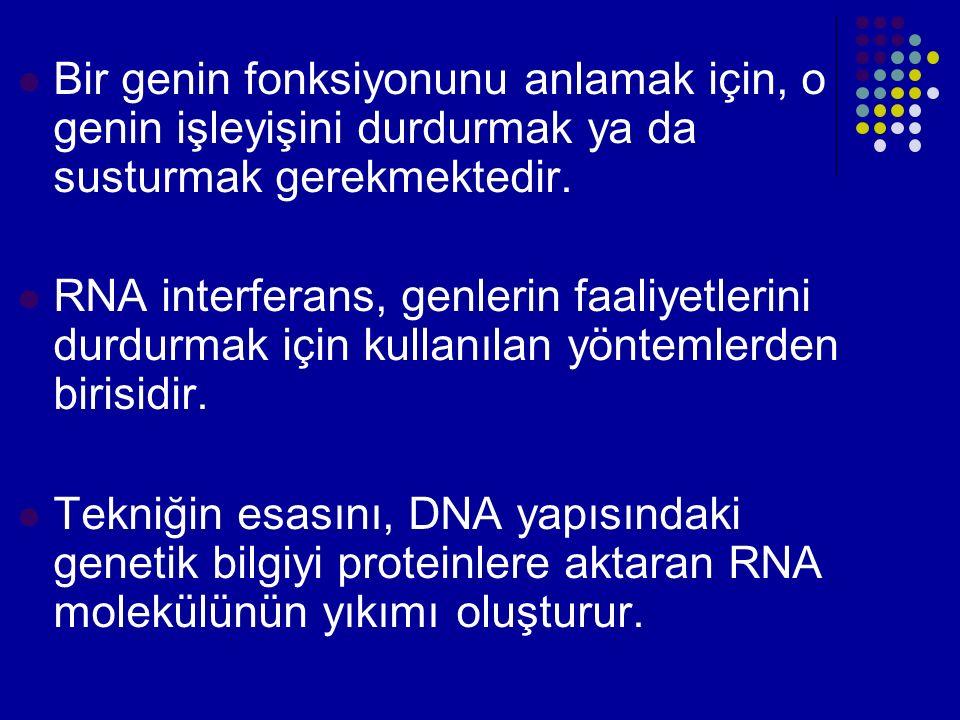 Bir genin fonksiyonunu anlamak için, o genin işleyişini durdurmak ya da susturmak gerekmektedir. RNA interferans, genlerin faaliyetlerini durdurmak iç