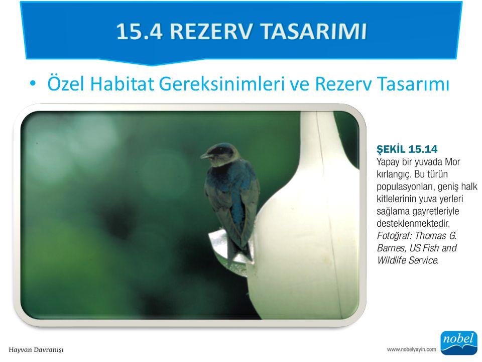 Özel Habitat Gereksinimleri ve Rezerv Tasarımı