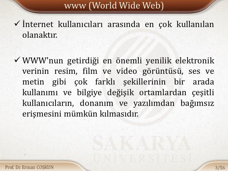Prof. Dr. Erman COŞKUN www (World Wide Web) İnternet kullanıcıları arasında en çok kullanılan olanaktır. WWW'nun getirdiği en önemli yenilik elektroni