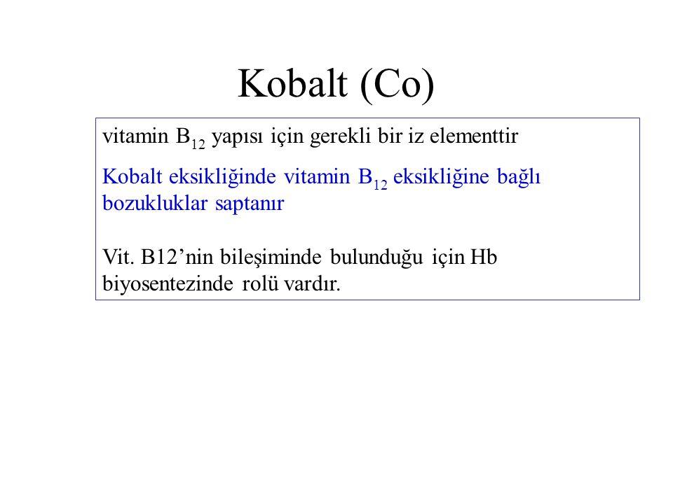 Kobalt (Co) vitamin B 12 yapısı için gerekli bir iz elementtir Kobalt eksikliğinde vitamin B 12 eksikliğine bağlı bozukluklar saptanır Vit. B12'nin bi