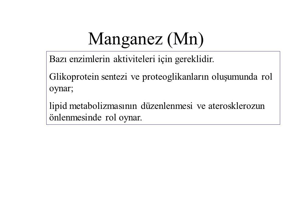 Manganez (Mn) Bazı enzimlerin aktiviteleri için gereklidir. Glikoprotein sentezi ve proteoglikanların oluşumunda rol oynar; lipid metabolizmasının düz