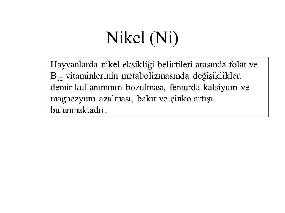 Nikel (Ni) Hayvanlarda nikel eksikliği belirtileri arasında folat ve B 12 vitaminlerinin metabolizmasında değişiklikler, demir kullanımının bozulması,