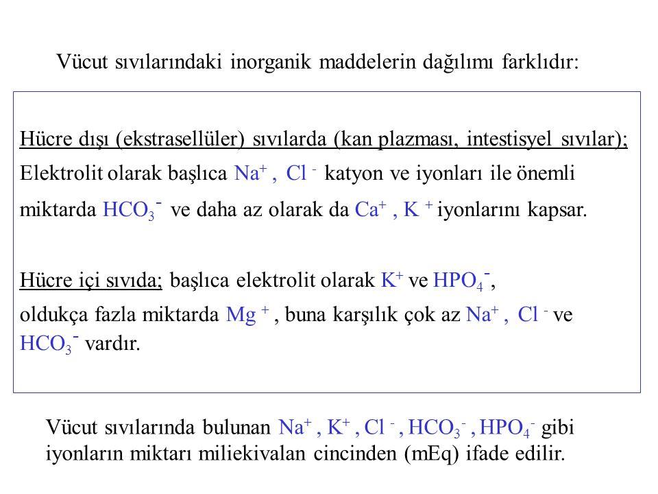 Vücut sıvılarındaki inorganik maddelerin dağılımı farklıdır: Hücre dışı (ekstrasellüler) sıvılarda (kan plazması, intestisyel sıvılar); Elektrolit ola