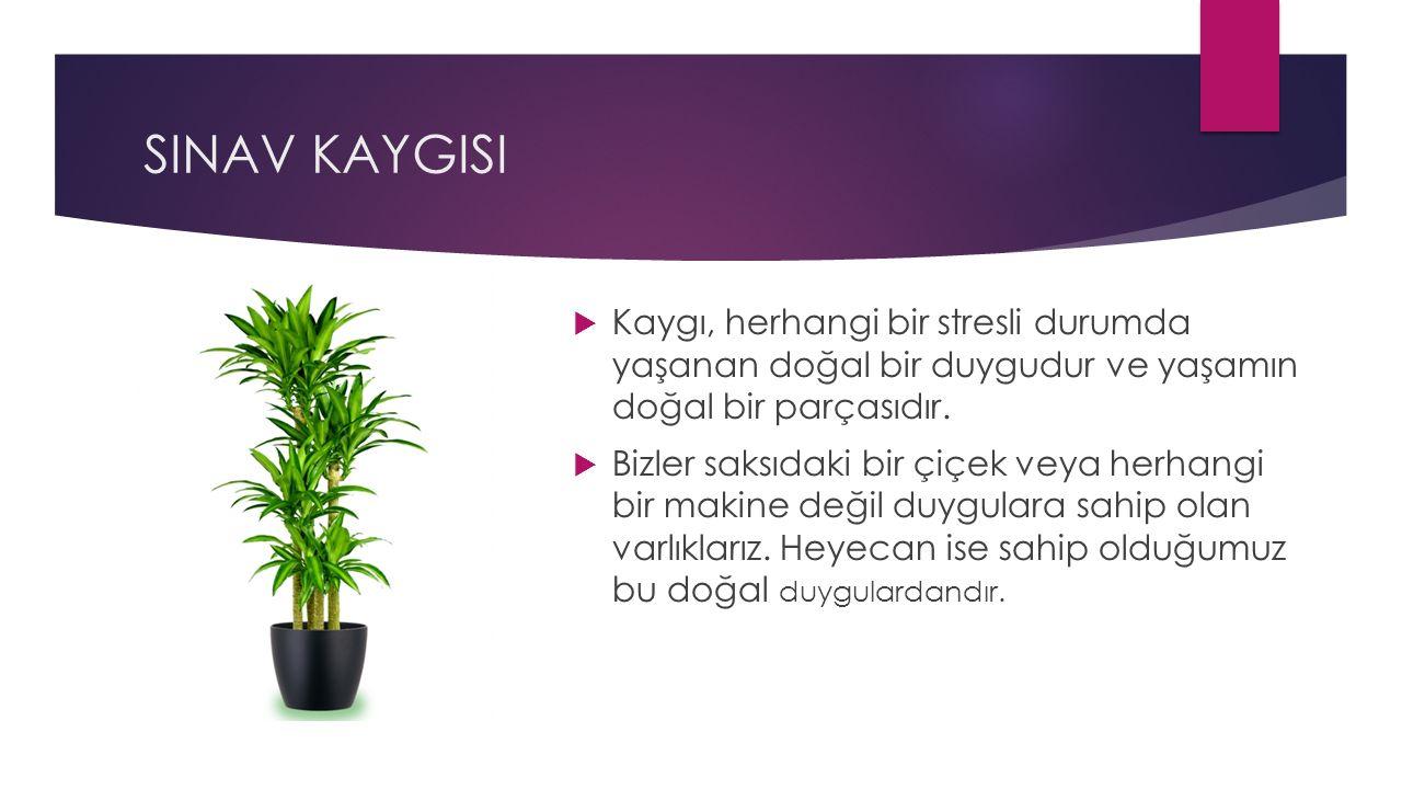 SINAV KAYGISI  Kaygı, herhangi bir stresli durumda yaşanan doğal bir duygudur ve yaşamın doğal bir parçasıdır.