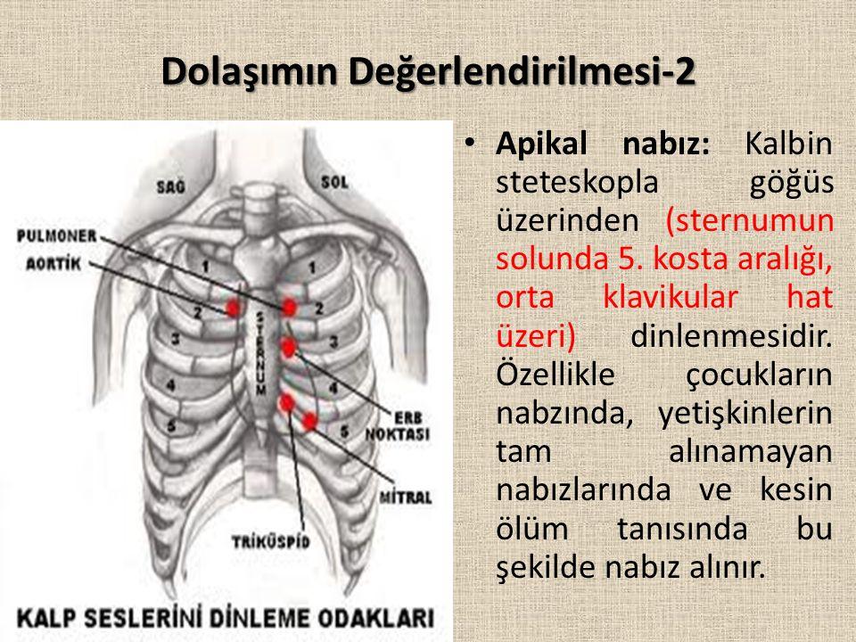 Dolaşımın Değerlendirilmesi-2 Apikal nabız: Kalbin steteskopla göğüs üzerinden (sternumun solunda 5.