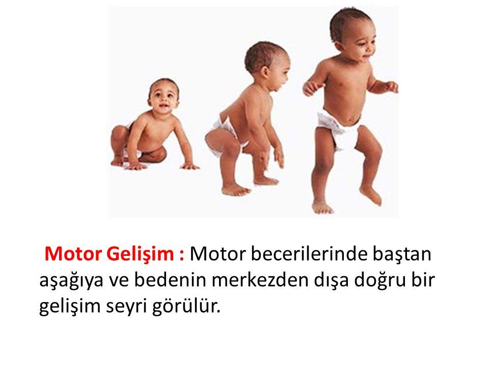 Motor Gelişim : Motor becerilerinde baştan aşağıya ve bedenin merkezden dışa doğru bir gelişim seyri görülür.
