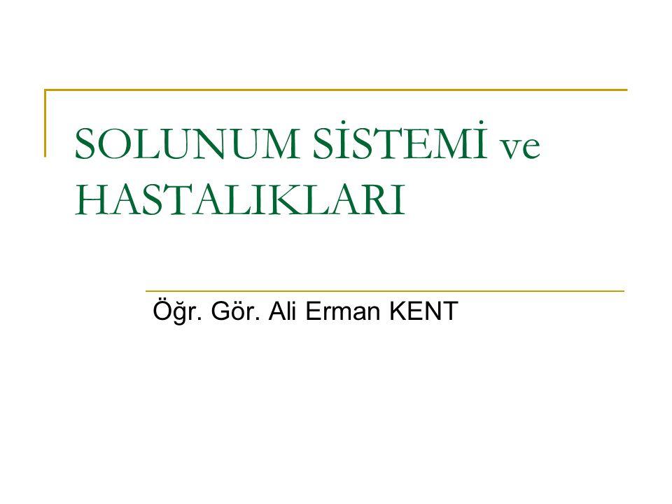SOLUNUM SİSTEMİ ve HASTALIKLARI Öğr. Gör. Ali Erman KENT