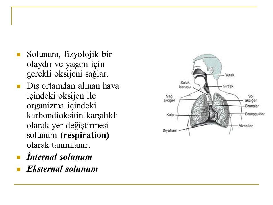 Solunum, fizyolojik bir olaydır ve yaşam için gerekli oksijeni sağlar. Dış ortamdan alınan hava içindeki oksijen ile organizma içindeki karbondioksiti