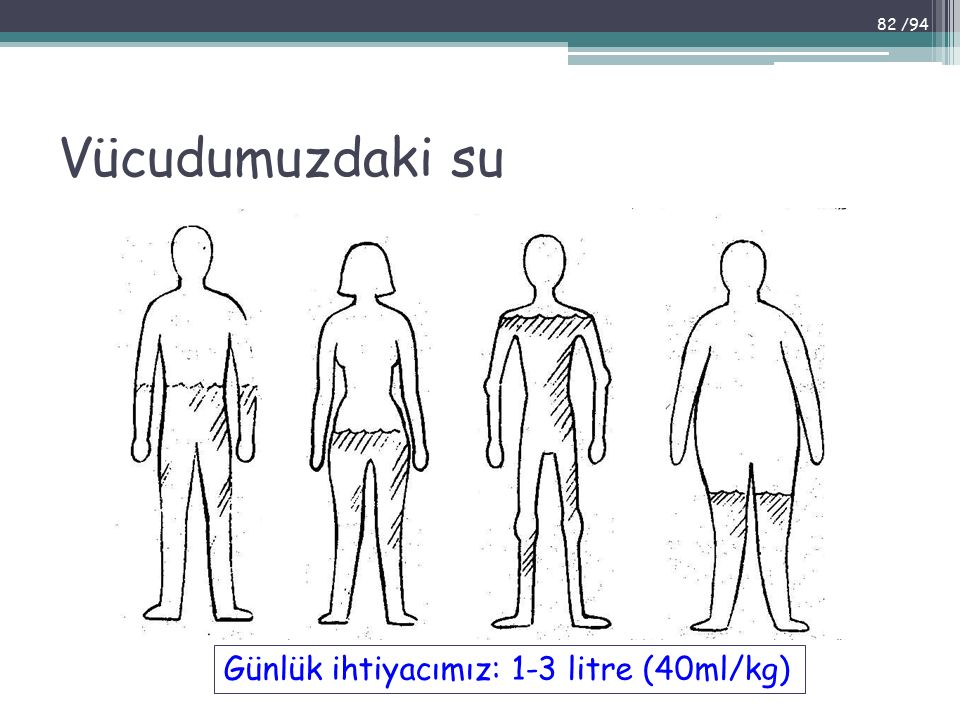 Vücudumuzdaki su Günlük ihtiyacımız: 1-3 litre (40ml/kg) 82 /94