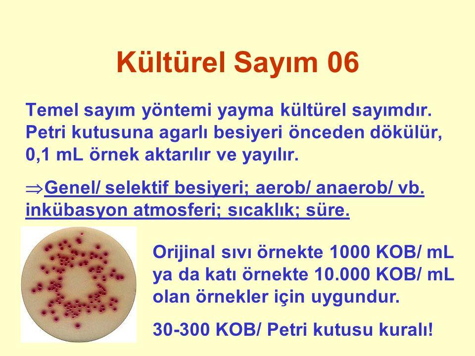 Kültürel Sayım 06 Temel sayım yöntemi yayma kültürel sayımdır. Petri kutusuna agarlı besiyeri önceden dökülür, 0,1 mL örnek aktarılır ve yayılır.  Ge