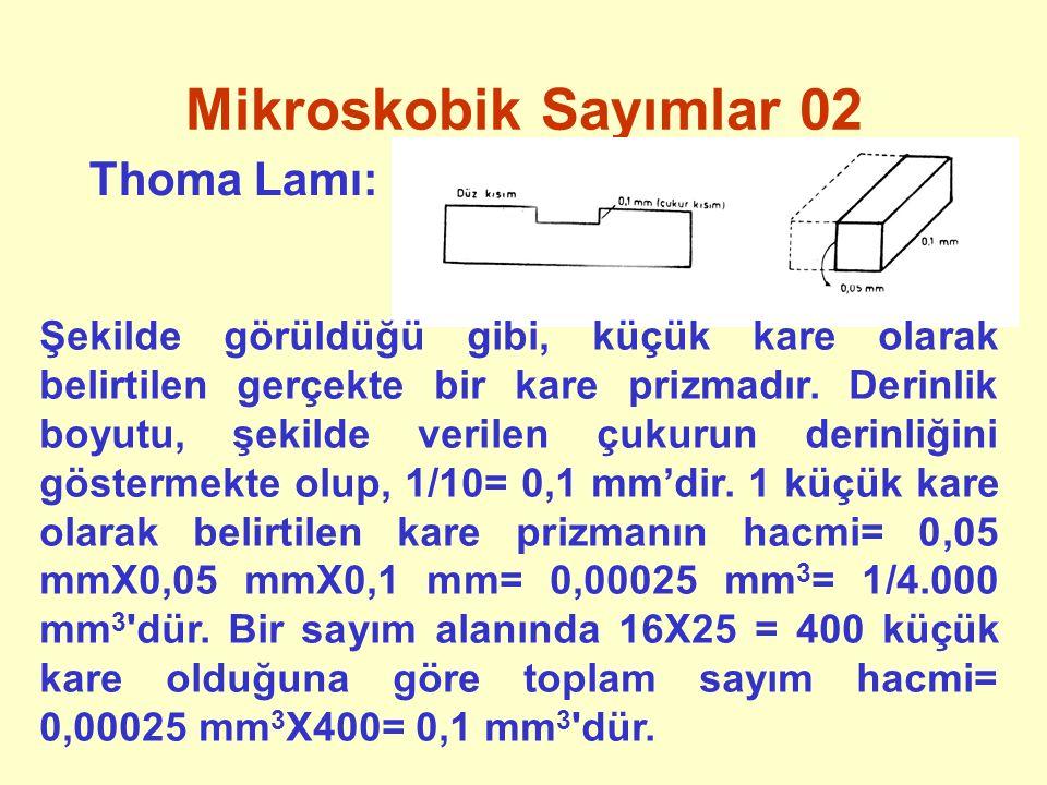 Mikroskobik Sayımlar 02 Thoma Lamı: Şekilde görüldüğü gibi, küçük kare olarak belirtilen gerçekte bir kare prizmadır. Derinlik boyutu, şekilde verilen