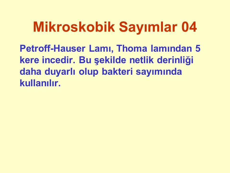 Kültürel Sayım 06 Temel sayım yöntemi yayma kültürel sayımdır.
