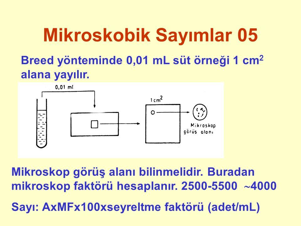 Mikroskobik Sayımlar 05 Breed yönteminde 0,01 mL süt örneği 1 cm 2 alana yayılır. Mikroskop görüş alanı bilinmelidir. Buradan mikroskop faktörü hesapl