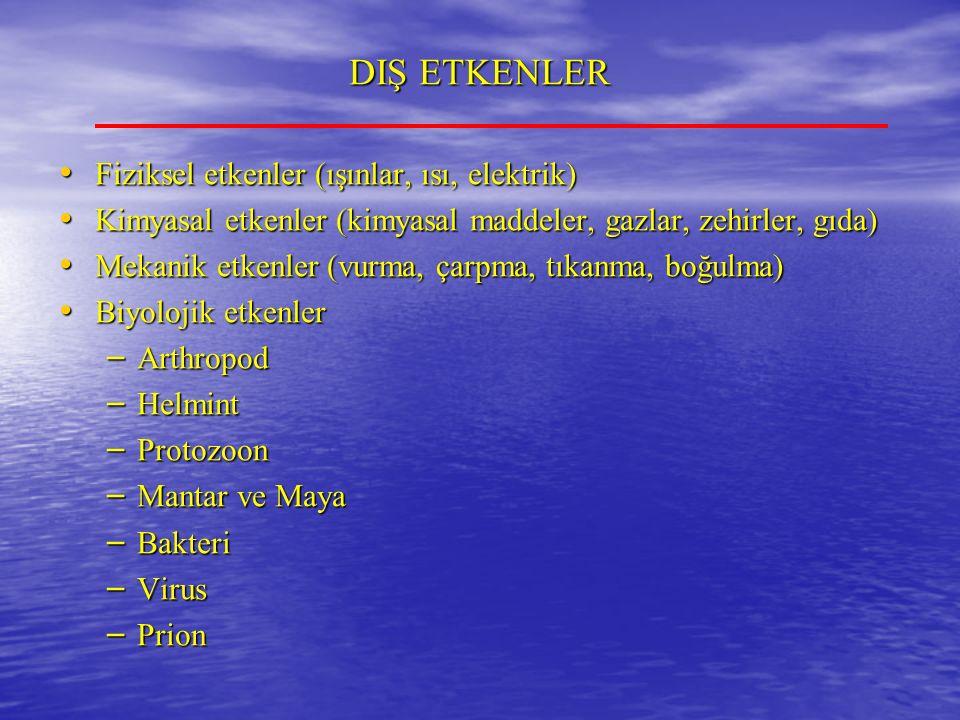 DIŞ ETKENLER Fiziksel etkenler (ışınlar, ısı, elektrik) Fiziksel etkenler (ışınlar, ısı, elektrik) Kimyasal etkenler (kimyasal maddeler, gazlar, zehirler, gıda) Kimyasal etkenler (kimyasal maddeler, gazlar, zehirler, gıda) Mekanik etkenler (vurma, çarpma, tıkanma, boğulma) Mekanik etkenler (vurma, çarpma, tıkanma, boğulma) Biyolojik etkenler Biyolojik etkenler – Arthropod – Helmint – Protozoon – Mantar ve Maya – Bakteri – Virus – Prion