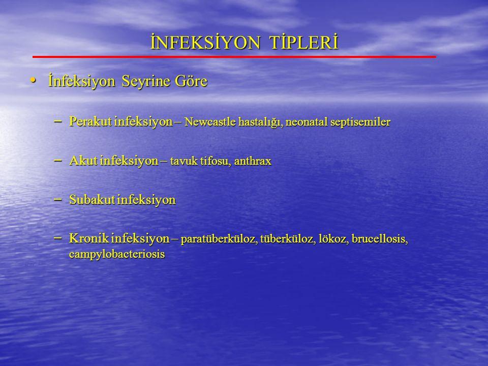 İNFEKSİYON TİPLERİ İnfeksiyon Seyrine Göre İnfeksiyon Seyrine Göre – Perakut infeksiyon – Newcastle hastalığı, neonatal septisemiler – Akut infeksiyon – tavuk tifosu, anthrax – Subakut infeksiyon – Kronik infeksiyon – paratüberküloz, tüberküloz, lökoz, brucellosis, campylobacteriosis