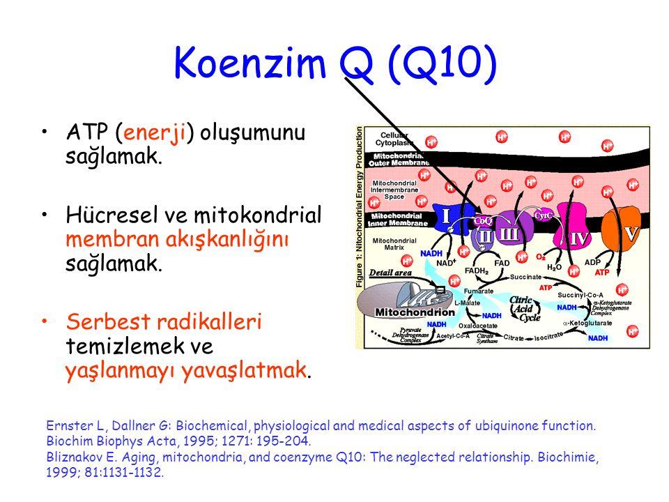 Koenzim Q (Q10) ATP (enerji) oluşumunu sağlamak. Hücresel ve mitokondrial membran akışkanlığını sağlamak. Serbest radikalleri temizlemek ve yaşlanmayı