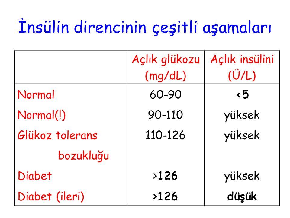 İnsülin direncinin çeşitli aşamaları Açlık glükozu (mg/dL) Açlık insülini (Ü/L) Normal Normal(!) Glükoz tolerans bozukluğu Diabet Diabet (ileri) 60-90