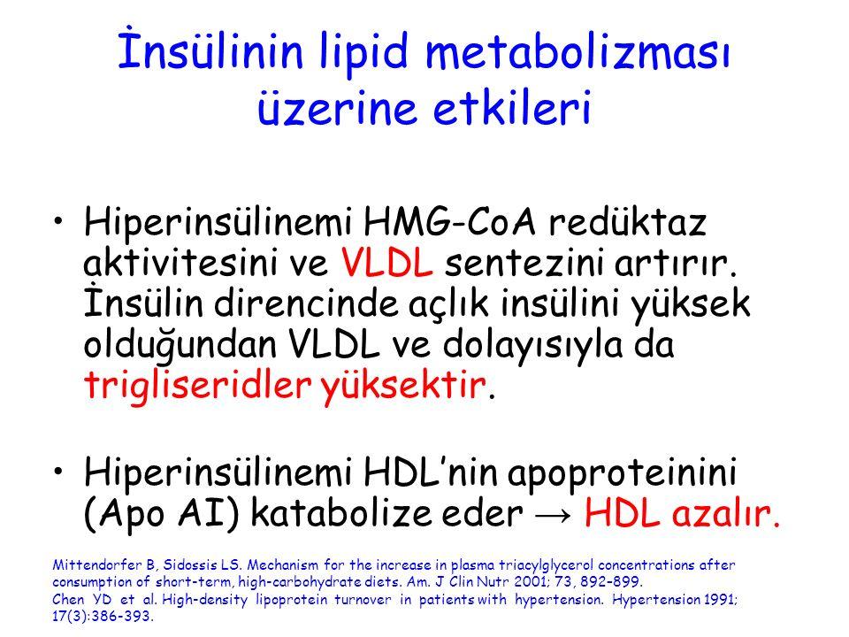 İnsülinin lipid metabolizması üzerine etkileri Hiperinsülinemi HMG-CoA redüktaz aktivitesini ve VLDL sentezini artırır. İnsülin direncinde açlık insül