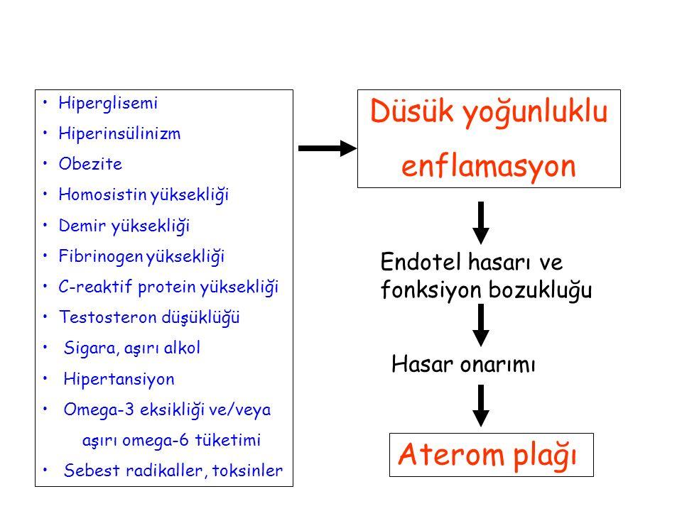 Hiperglisemi Hiperinsülinizm Obezite Homosistin yüksekliği Demir yüksekliği Fibrinogen yüksekliği C-reaktif protein yüksekliği Testosteron düşüklüğü S
