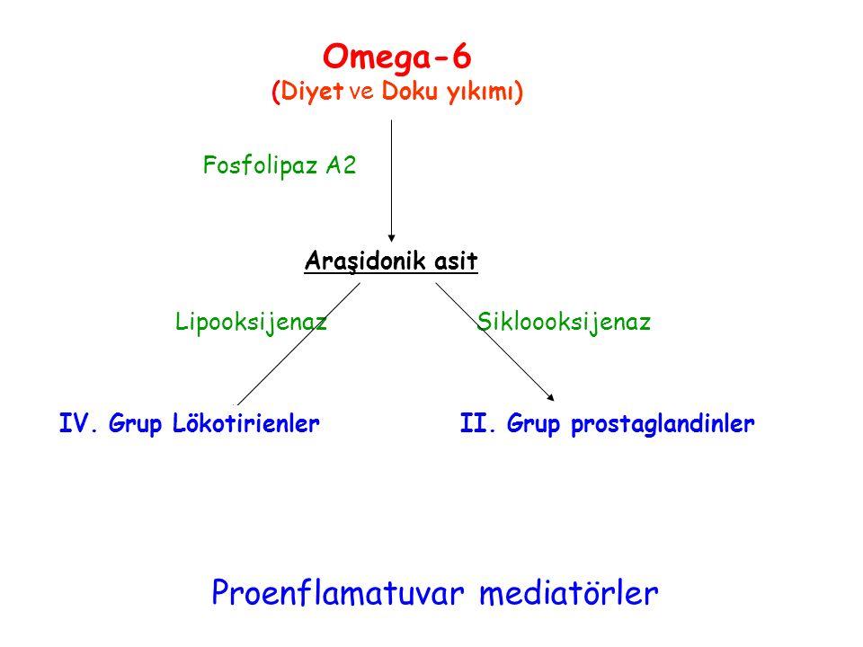 Araşidonik asit Lipooksijenaz Sikloooksijenaz Fosfolipaz A2 Proenflamatuvar mediatörler Omega-6 (Diyet ve Doku yıkımı) IV. Grup LökotirienlerII. Grup