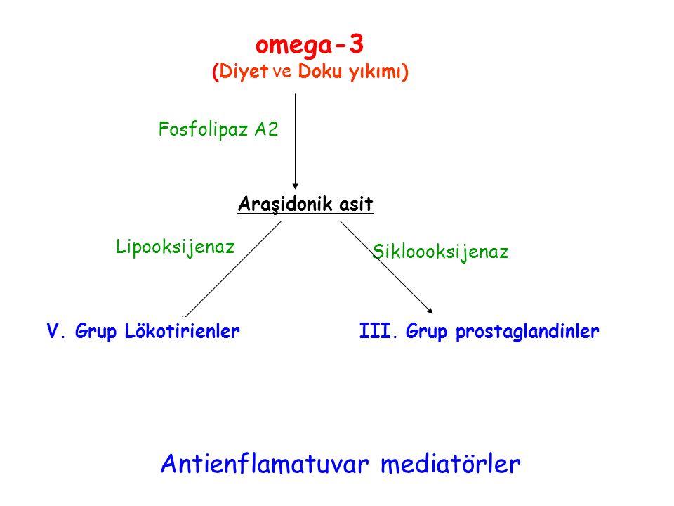 Araşidonik asit Lipooksijenaz Sikloooksijenaz Fosfolipaz A2 Antienflamatuvar mediatörler omega-3 (Diyet ve Doku yıkımı) V. Grup LökotirienlerIII. Grup
