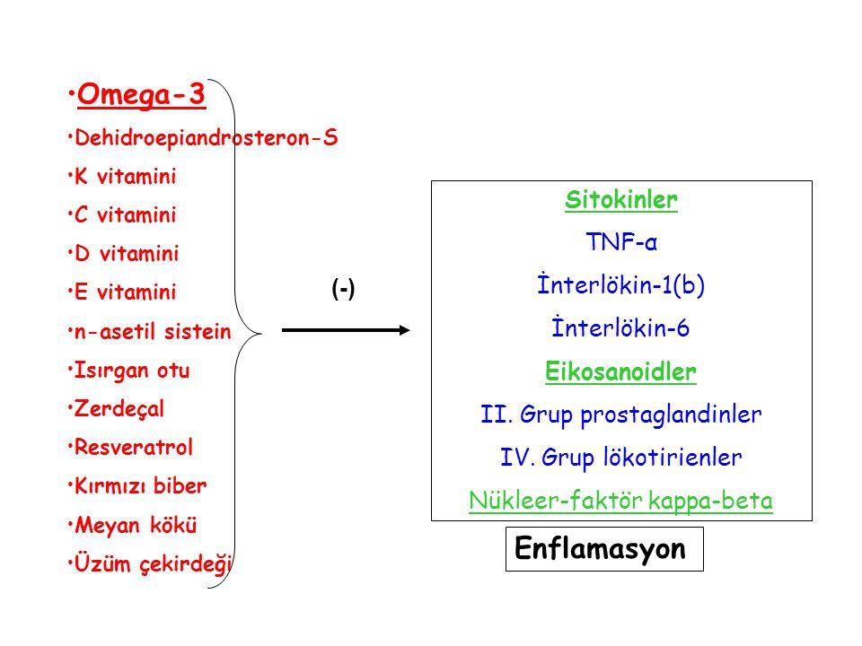 Enflamasyon Omega-3 Dehidroepiandrosteron-S K vitamini C vitamini D vitamini E vitamini n-asetil sistein Isırgan otu Zerdeçal Resveratrol Kırmızı bibe