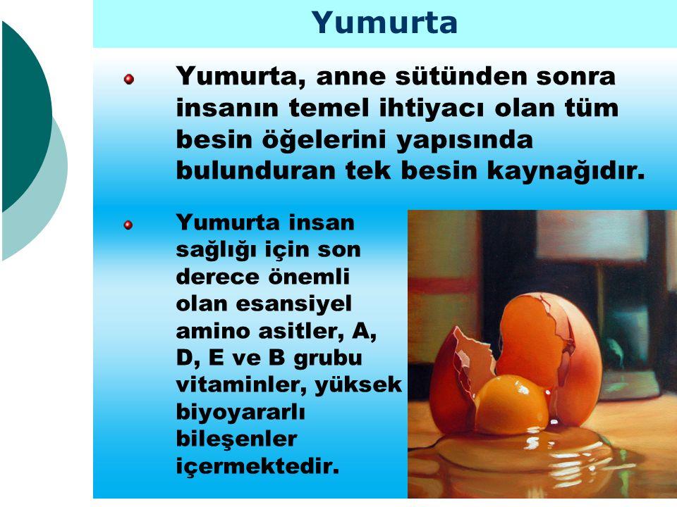 Yumurta, anne sütünden sonra insanın temel ihtiyacı olan tüm besin öğelerini yapısında bulunduran tek besin kaynağıdır. Yumurta Yumurta insan sağlığı