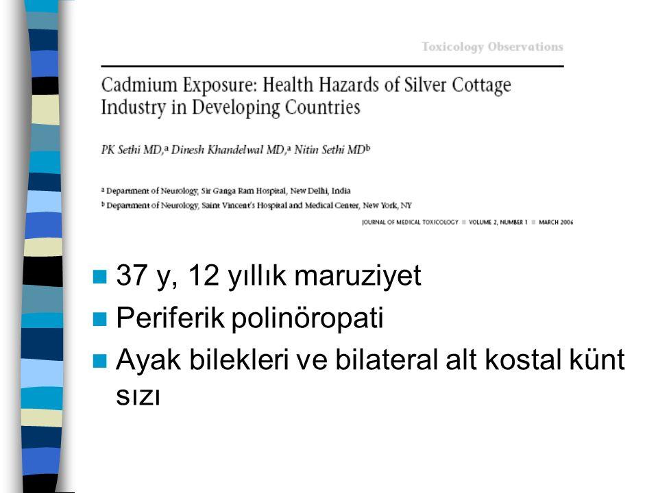 37 y, 12 yıllık maruziyet Periferik polinöropati Ayak bilekleri ve bilateral alt kostal künt sızı