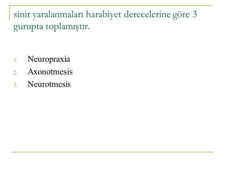 sinir yaralanmaları harabiyet derecelerine göre 3 gurupta toplamıştır. 1. Neuropraxia 2. Axonotmesis 3. Neurotmesis