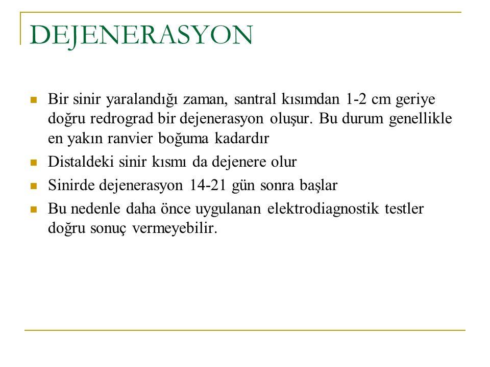DEJENERASYON Bir sinir yaralandığı zaman, santral kısımdan 1-2 cm geriye doğru redrograd bir dejenerasyon oluşur.