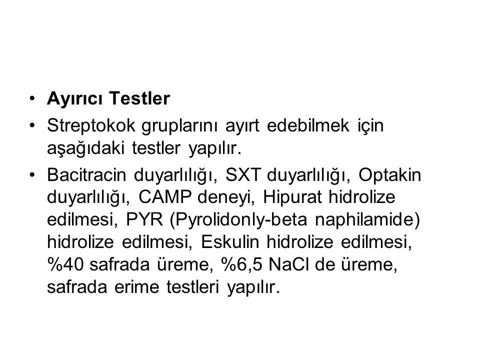 Ayırıcı Testler Streptokok gruplarını ayırt edebilmek için aşağıdaki testler yapılır. Bacitracin duyarlılığı, SXT duyarlılığı, Optakin duyarlılığı, CA