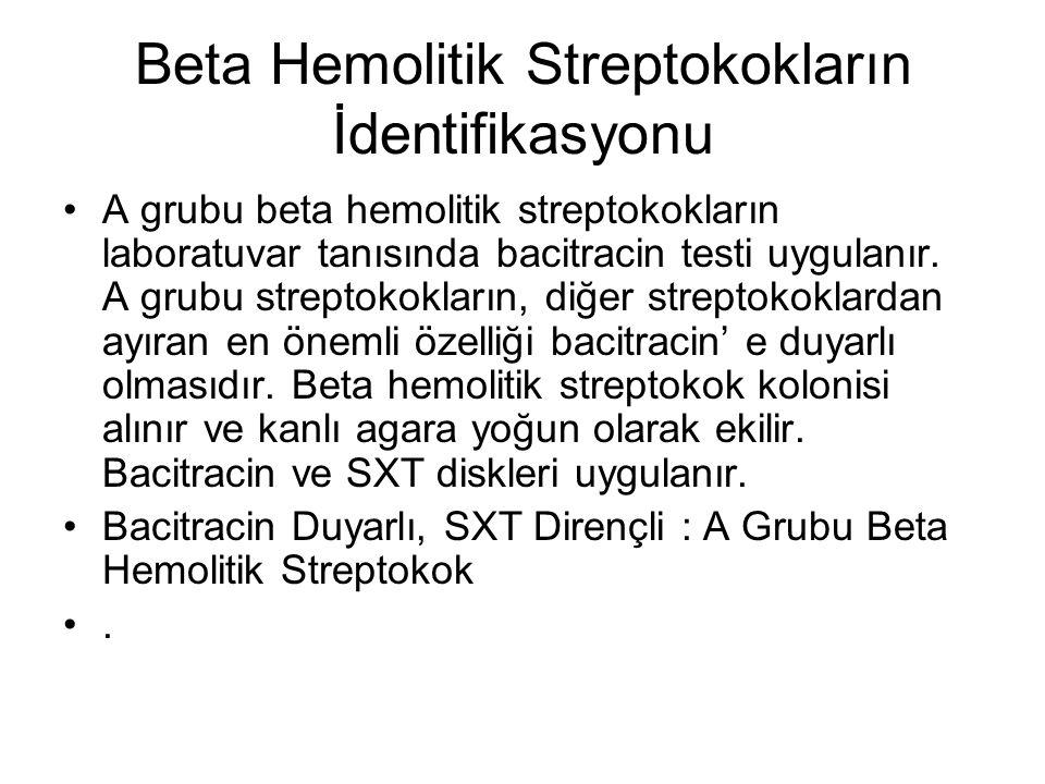 Beta Hemolitik Streptokokların İdentifikasyonu A grubu beta hemolitik streptokokların laboratuvar tanısında bacitracin testi uygulanır. A grubu strept