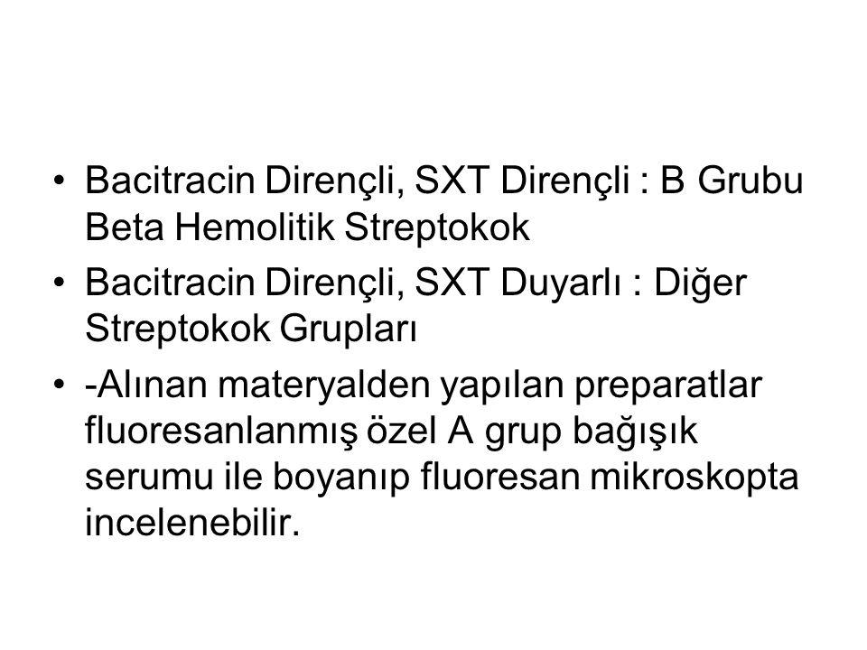 Bacitracin Dirençli, SXT Dirençli : B Grubu Beta Hemolitik Streptokok Bacitracin Dirençli, SXT Duyarlı : Diğer Streptokok Grupları -Alınan materyalden