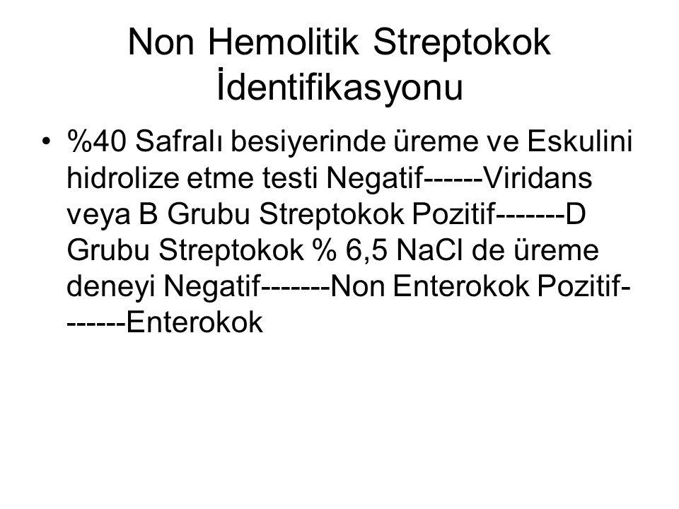 Non Hemolitik Streptokok İdentifikasyonu %40 Safralı besiyerinde üreme ve Eskulini hidrolize etme testi Negatif------Viridans veya B Grubu Streptokok