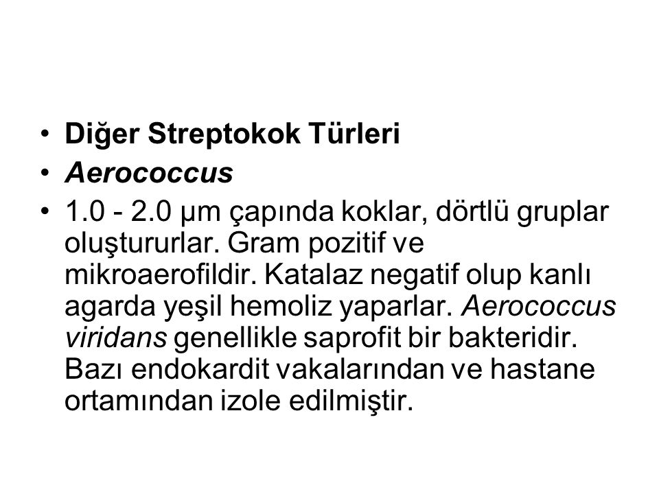 Diğer Streptokok Türleri Aerococcus 1.0 - 2.0 µm çapında koklar, dörtlü gruplar oluştururlar. Gram pozitif ve mikroaerofildir. Katalaz negatif olup ka