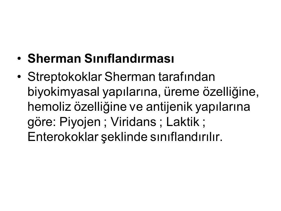 Sherman Sınıflandırması Streptokoklar Sherman tarafından biyokimyasal yapılarına, üreme özelliğine, hemoliz özelliğine ve antijenik yapılarına göre: P