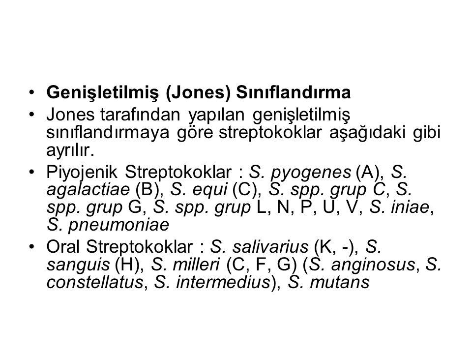 Genişletilmiş (Jones) Sınıflandırma Jones tarafından yapılan genişletilmiş sınıflandırmaya göre streptokoklar aşağıdaki gibi ayrılır. Piyojenik Strept
