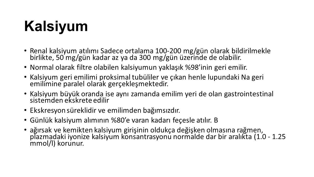 Kalsiyum Renal kalsiyum atılımı Sadece ortalama 100-200 mg/gün olarak bildirilmekle birlikte, 50 mg/gün kadar az ya da 300 mg/gün üzerinde de olabilir
