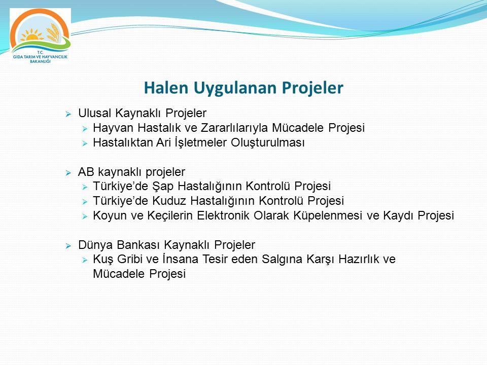 Halen Uygulanan Projeler  Ulusal Kaynaklı Projeler  Hayvan Hastalık ve Zararlılarıyla Mücadele Projesi  Hastalıktan Ari İşletmeler Oluşturulması 