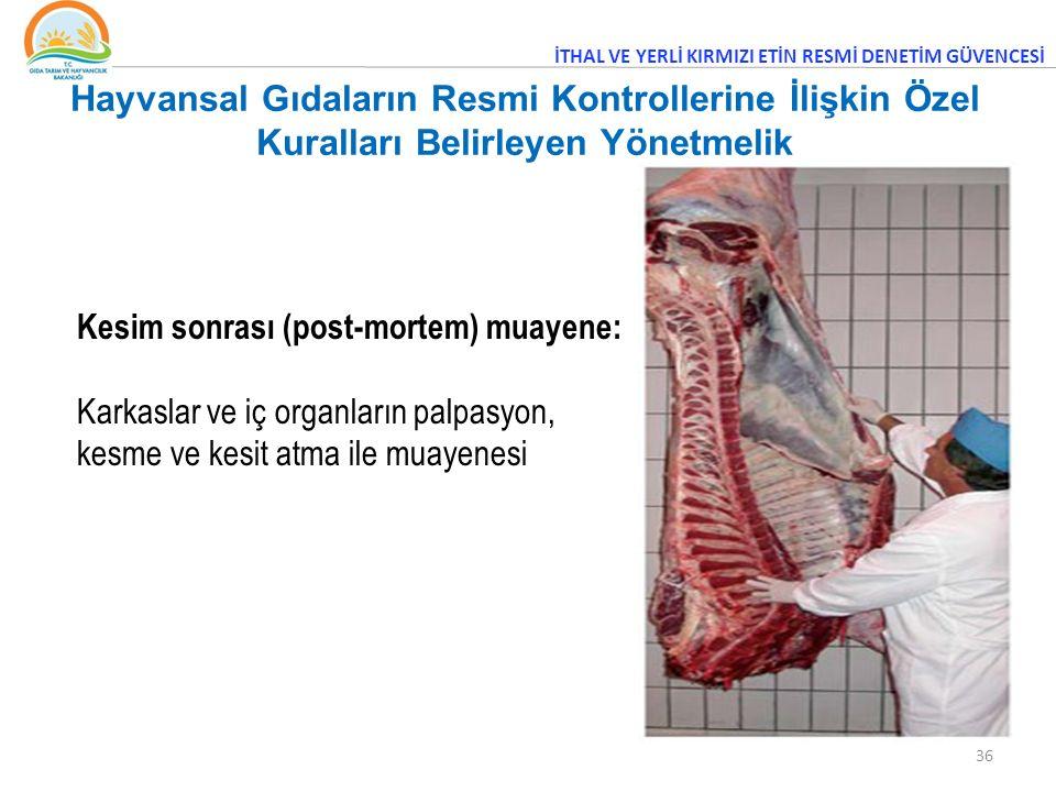 36 Kesim sonrası (post-mortem) muayene: Karkaslar ve iç organların palpasyon, kesme ve kesit atma ile muayenesi İTHAL VE YERLİ KIRMIZI ETİN RESMİ DENETİM GÜVENCESİ Hayvansal Gıdaların Resmi Kontrollerine İlişkin Özel Kuralları Belirleyen Yönetmelik