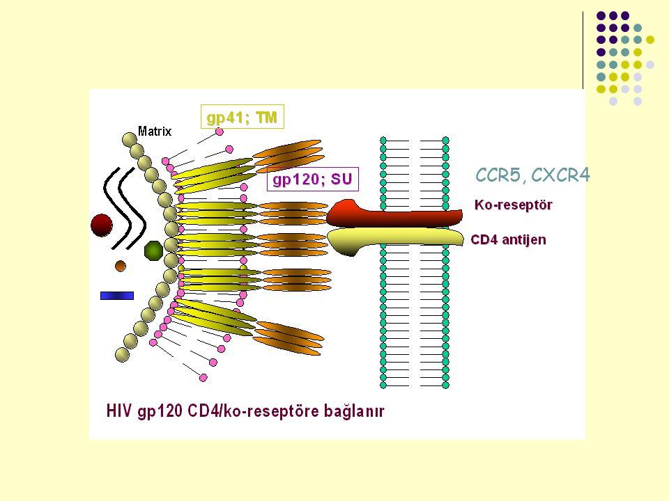 CCR5, CXCR4