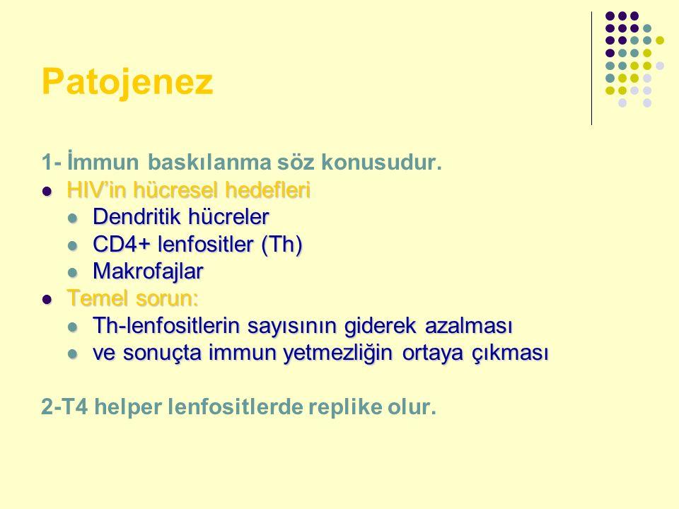 Patojenez 1- İmmun baskılanma söz konusudur. HIV'in hücresel hedefleri HIV'in hücresel hedefleri Dendritik hücreler Dendritik hücreler CD4+ lenfositle
