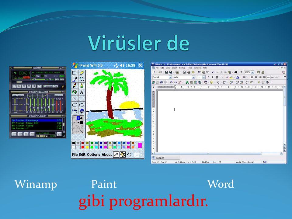 Diğer programlar gibi sizin ihtiyaçlarınız için değil, virüsü yazan programcının kötü emelleri için çalışır.