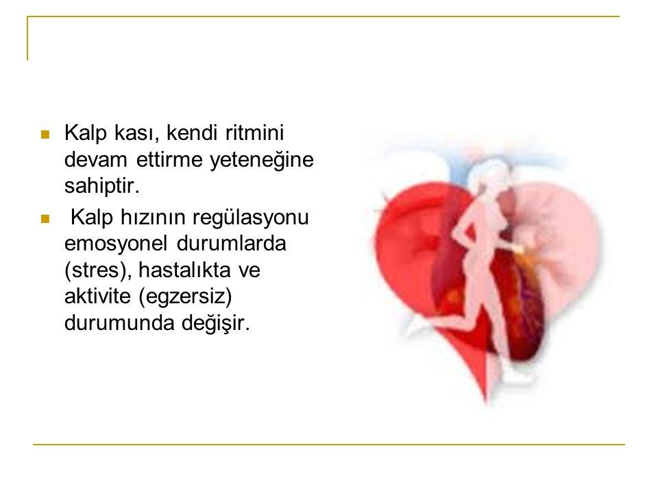 Kalbin pompaladığ hacmin düzenlenmesi başlıca iki yolla olur 1-iç kaynaklı (intrensek) düzenlenme 2-Kalbin otonom sinir sistemiyle düzenlenmesi