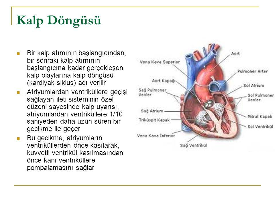 Sistol ve Diyastol Kalp döngüsü, kalbin kan ile dolduğu diyastol adı verilen bir gevşeme döneminden ve bunu izleyen sistol adı verilen kasılma döneminden meydana gelir