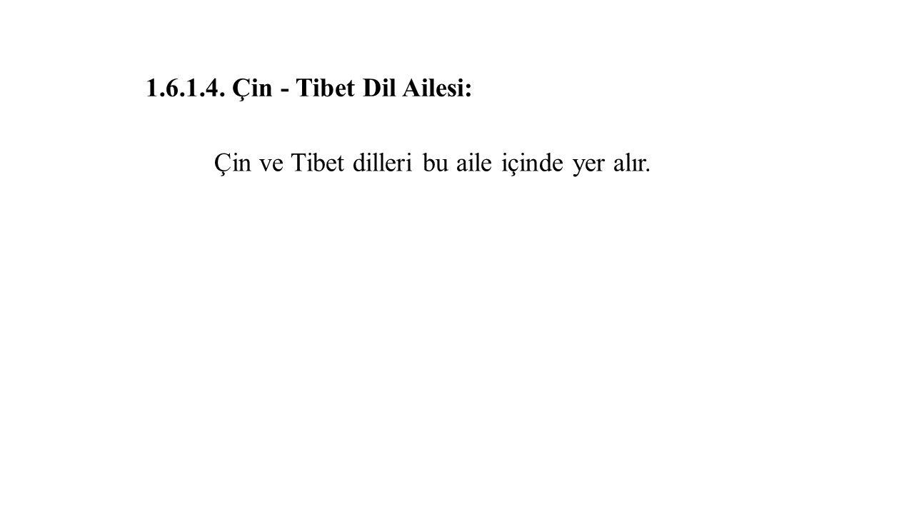 1.6.1.4. Çin - Tibet Dil Ailesi: Çin ve Tibet dilleri bu aile içinde yer alır.