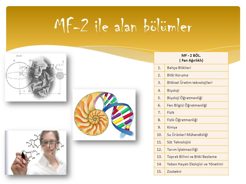 MF-2 ile alan bölümler MF - 2 BÖL. ( Fen Ağırlıklı) 1.Bahçe Bitkileri 2.Bitki Koruma 3.Bitkisel Üretim teknolojileri 4.Biyoloji 5.Biyoloji Öğretmenliğ